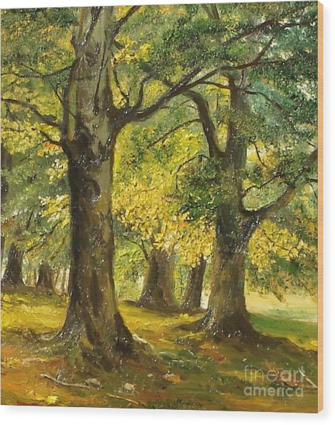 Beeches In The Park Wood Print