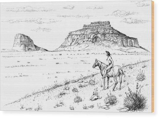 Open Prairie Overlook Wood Print