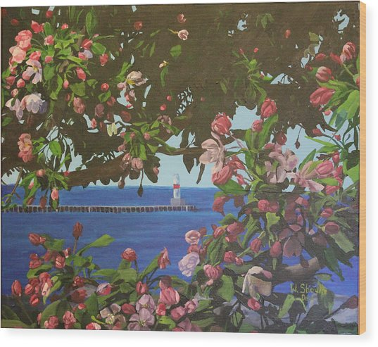 Beginnings Of Summer At The Waterfront Wood Print