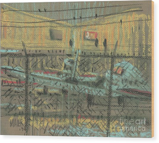 Behind The Fence Wood Print by Donald Maier
