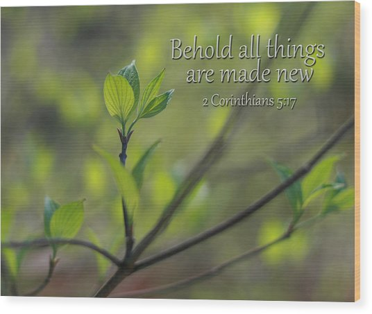 Behold All Things Are New Wood Print