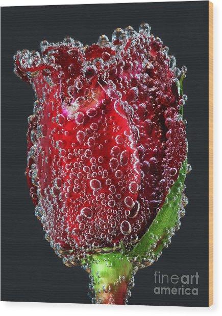 Bejeweled Rose Wood Print