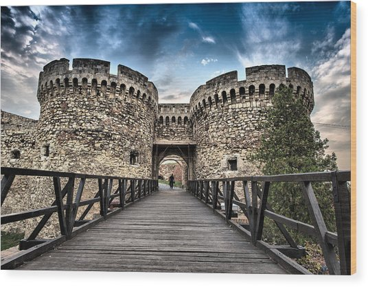 Belgrade Castle Wood Print