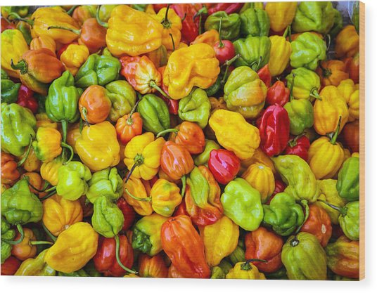 Belize Peppers Wood Print