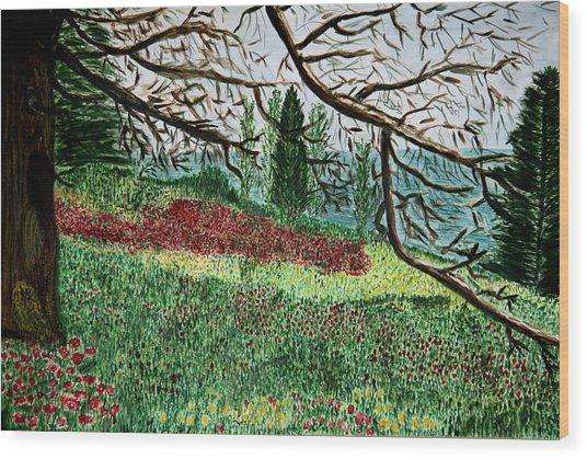 Bella Vista. Wood Print