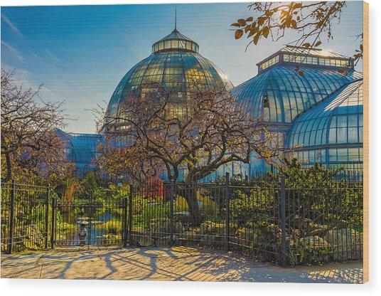 Belle Isle Arboretum Wood Print