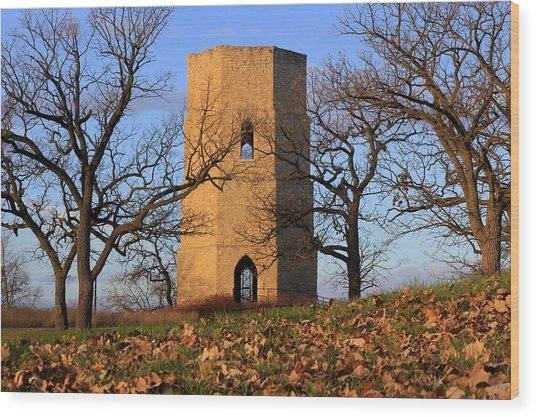 Beloit Historic Water Tower Wood Print