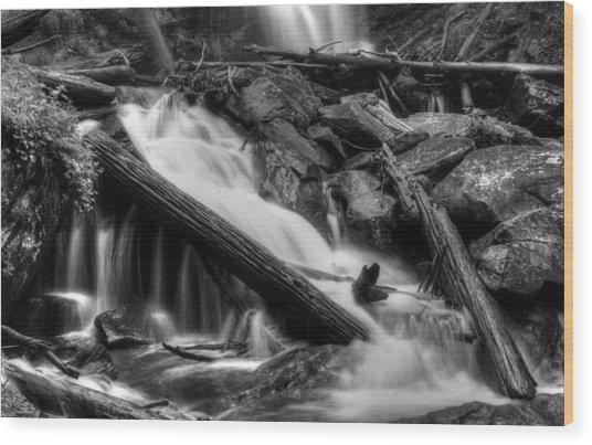Below Anna Ruby Falls In Black And White Wood Print