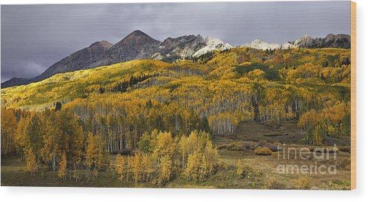 Below The Ruby Range Wood Print