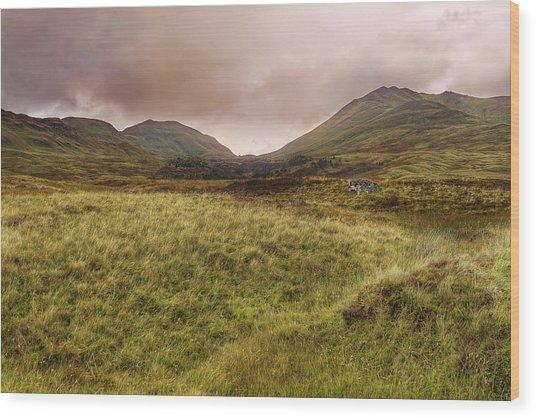 Ben Lawers - Scotland - Mountain - Landscape Wood Print