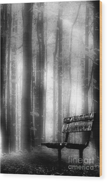 Bench In Michigan Woods Wood Print