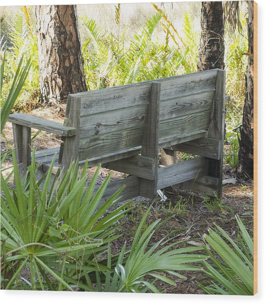 Bench In Nature Wood Print