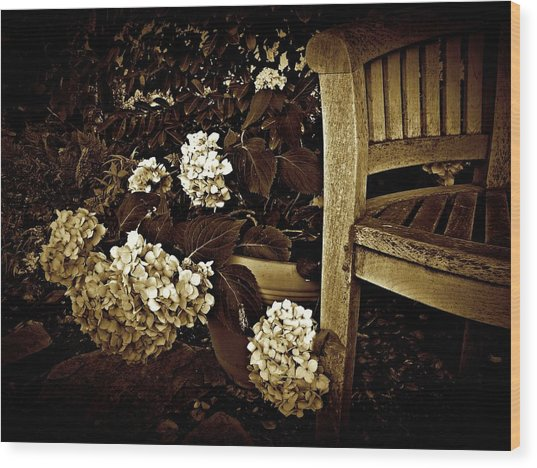 Bench With Hydrangeas Wood Print