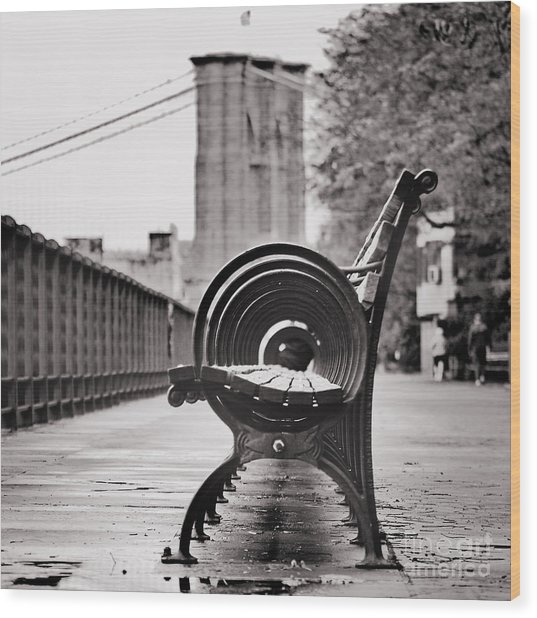 Bench's Circles And Brooklyn Bridge - Brooklyn Heights Promenade - New York City Wood Print