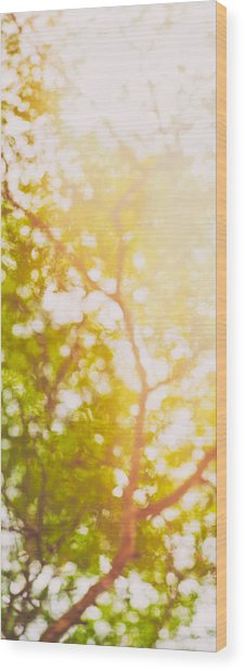 Beneath A Tree  14 5199   Diptych  Set 1 Of 2 Wood Print
