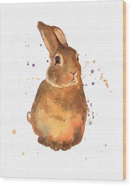 Benjamin Bunny Wood Print