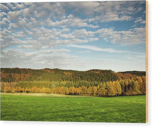 Bergisches Land Wood Print by Jorg Greuel
