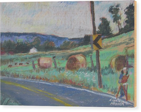Berkshire Mountain Painter Wood Print