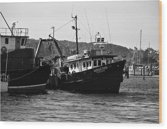 Bermagui Boats Wood Print
