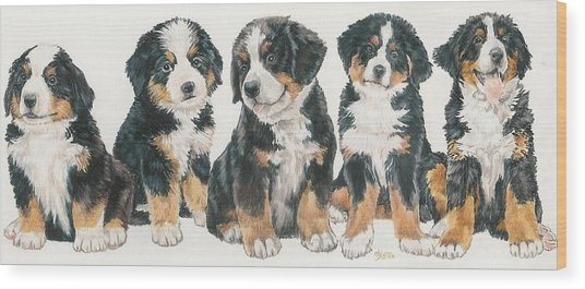 Bernese Mountain Dog Puppies Wood Print