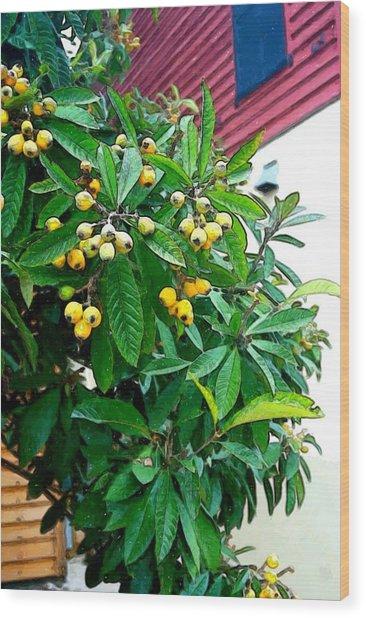Berries Wood Print