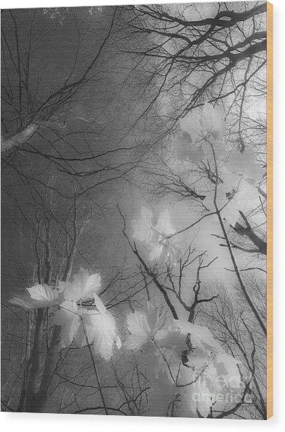 Between Black And White-02 Wood Print