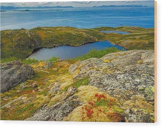 Beyond The Arctic Circle Wood Print by Maciej Markiewicz