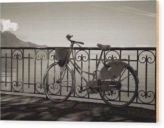 Bicycle Basket Fence Wood Print