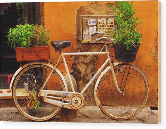 Bicycle In Rome Wood Print