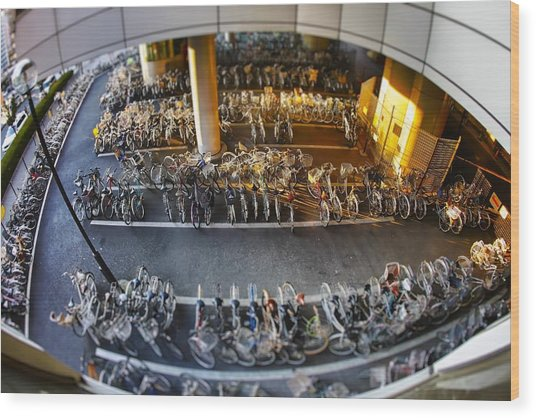 Bicycle Parking Wood Print by Rscpics
