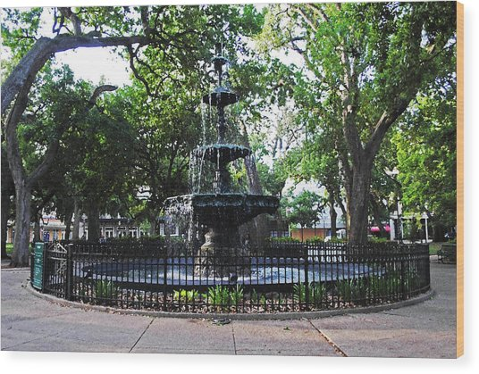 Bienville Fountain Mobile Alabama Wood Print