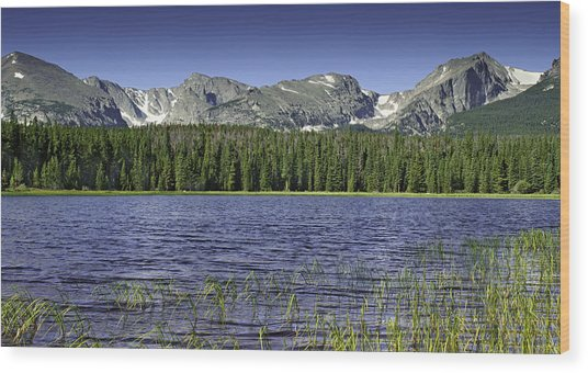 Bierstadt Lake Wood Print by Tom Wilbert