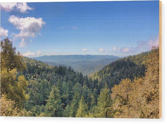 Big Basin Redwoods Wood Print