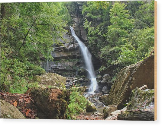 Big Bradley Falls Wood Print