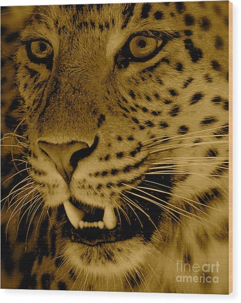 Big Cat In Sepia Wood Print