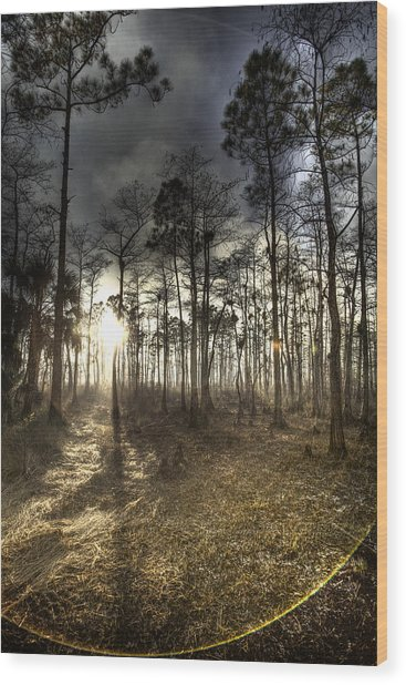 Big Cypress Fire At Sunset Wood Print