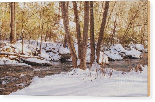 Big Gunpowder Falls River 1 Wood Print