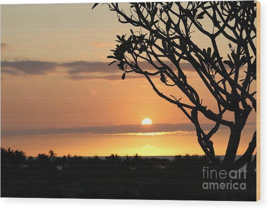 Big Island Sunset All Profits Go To Hospice Of The Calumet Area Wood Print