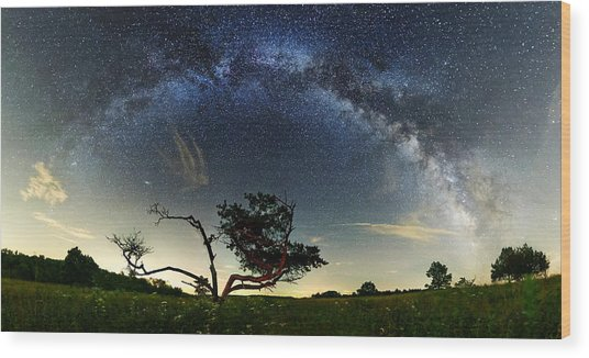 Big Meadows Milkyway  Wood Print by Andrew Fritz