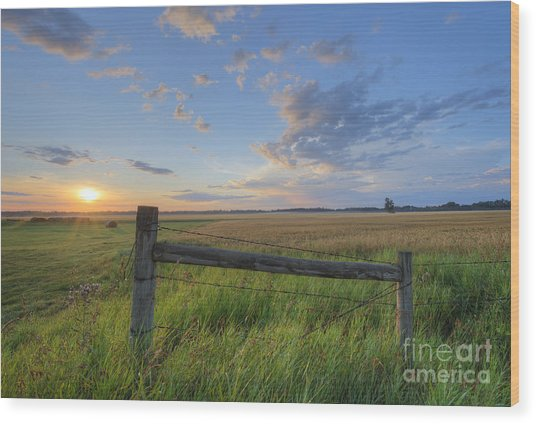 Big Sky Alberta Wood Print