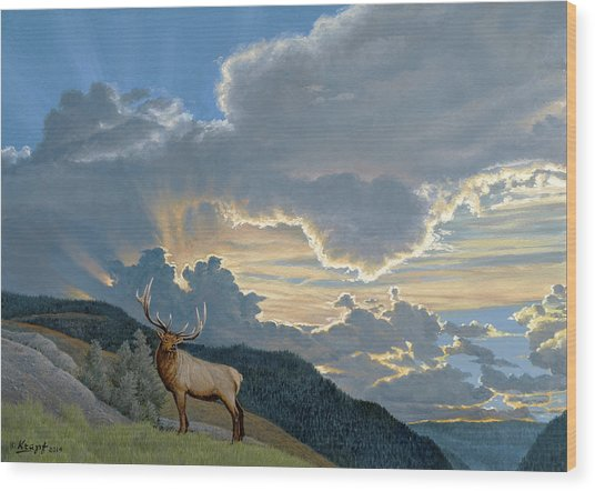 Big Sky-bull Elk Wood Print by Paul Krapf