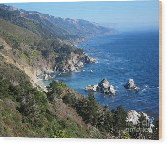 Big Sur Coast Ca Wood Print