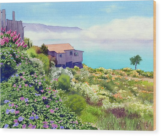 Big Sur Cottage Wood Print