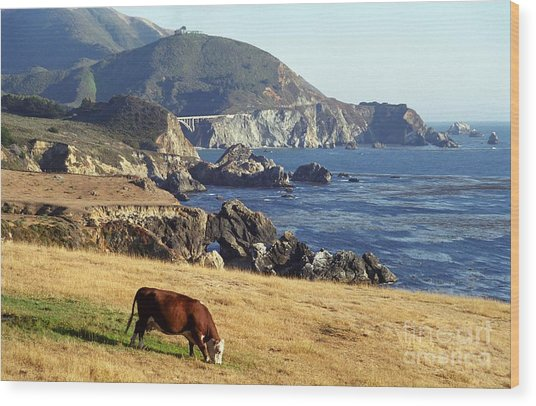 Big Sur Cow Wood Print