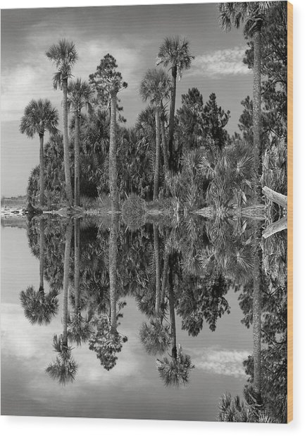 Big Talbot Reflects Wood Print