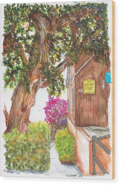Big Tree At The Bead Shop, Laguna Beach, California Wood Print