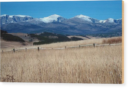 Bighorn Mountains Wy Wood Print