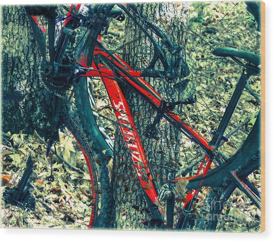 Bike By Wilderness  Wood Print by Steven Digman