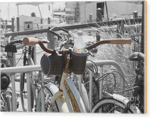 Biking With Panama Jack  Wood Print by Steven Digman