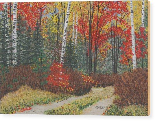 Birch Trail Wood Print